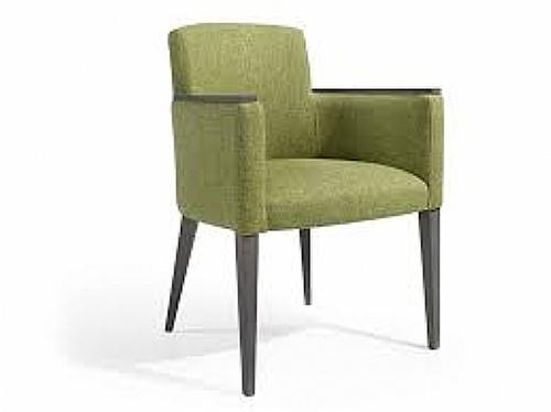 fauteuil franck assise fauteuil canap pouf cabrio ref franck f mobiliers ephad et. Black Bedroom Furniture Sets. Home Design Ideas